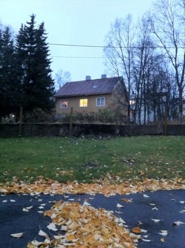 20111102-000557.jpg
